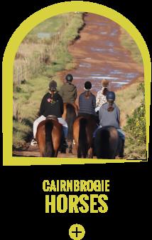 Cairnbrogie Horse Trails